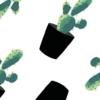 cactus-detail