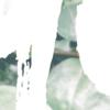 botanischeposter-bladerendetail