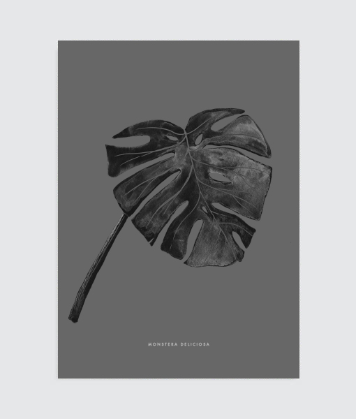 monstera-vingerplant-poster-vtwonen-interieurtrend