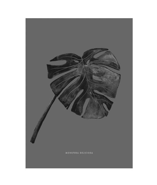 vingerplantposter-monstera-zwart