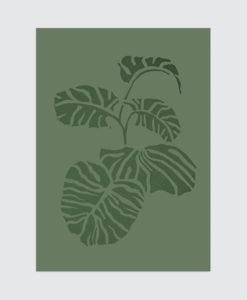 vingerplantgroen-grijs